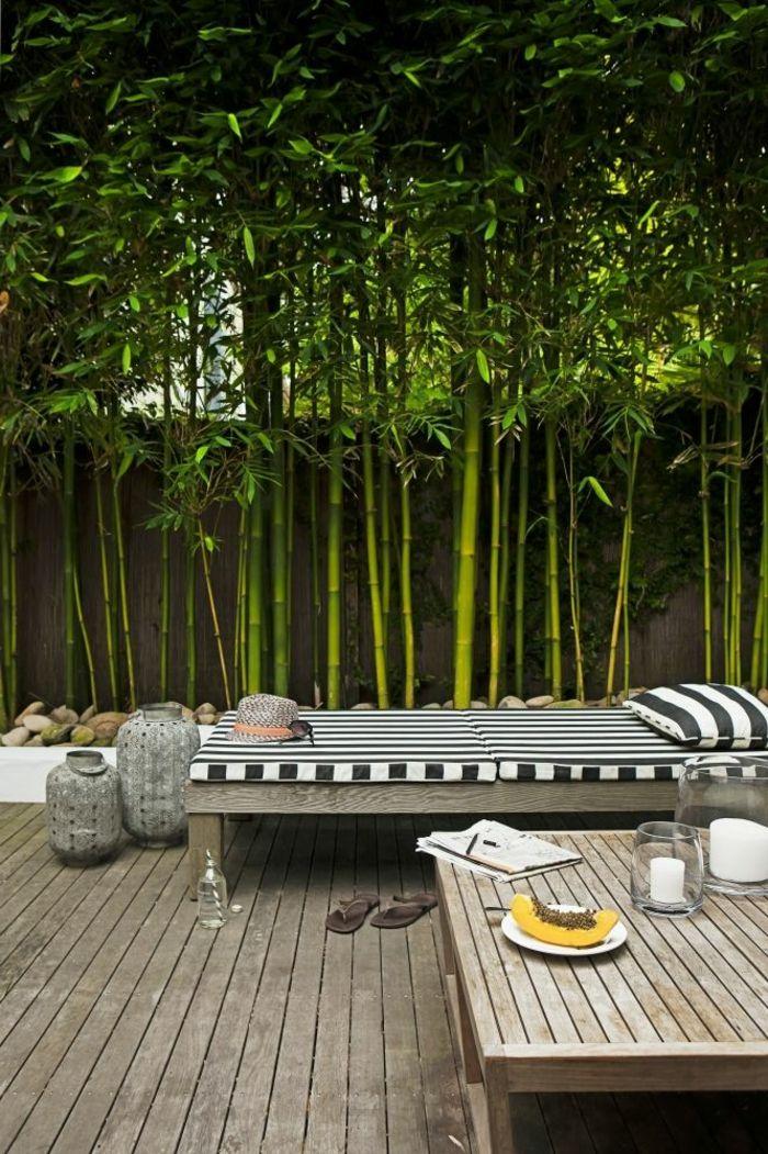 comment planter des bambous dans jardin gardens patios and backyard
