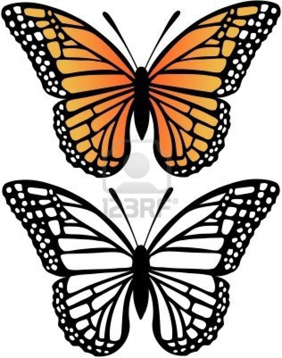 Monarch Butterfly And Silhouette Vector Illustration Butterfly Template Butterfly Drawing Butterfly Printable [ 1203 x 948 Pixel ]