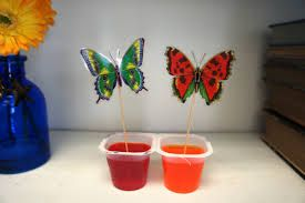 ladybug jelly cups - Google Search