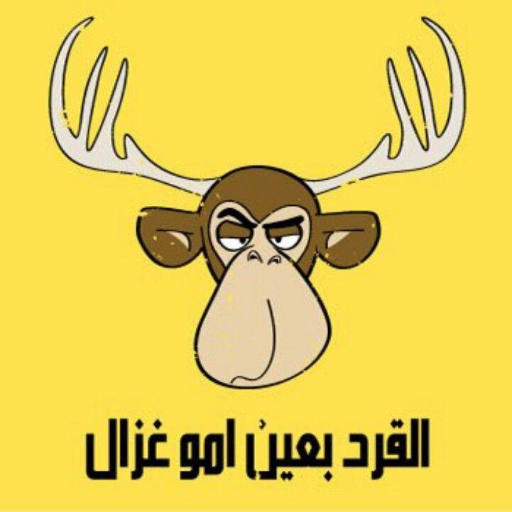 القرد بعين امو غزال Funny Words Funny Arabic Quotes Arabic Funny