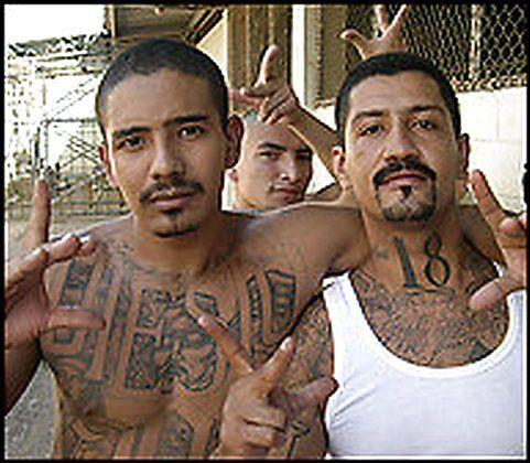 Web Hosting This Site Is Temporarily Unavailable Gang Culture Chicano Gang Crime