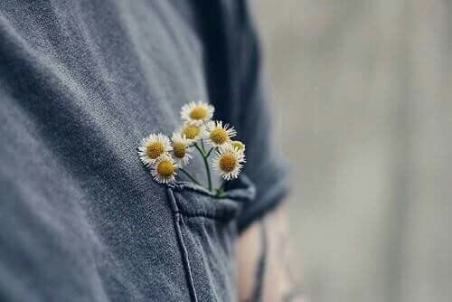 Pin By Jack On Outfits Trendy Plants Aesthetic Flowers