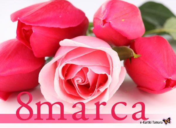 8 Marca Dzien Kobiet Good Morning Roses Pink Rose Pictures Good Morning Rose Images