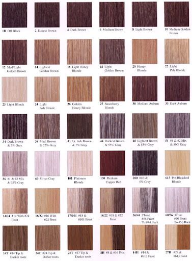 Shades Of Brown Hair Color Chart Solidique27