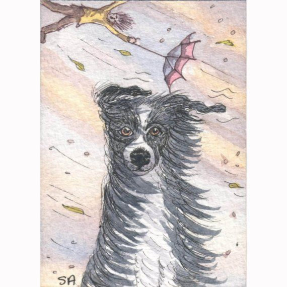 4 x Border Collie dog greeting cards Yes it IS by susanalisonart