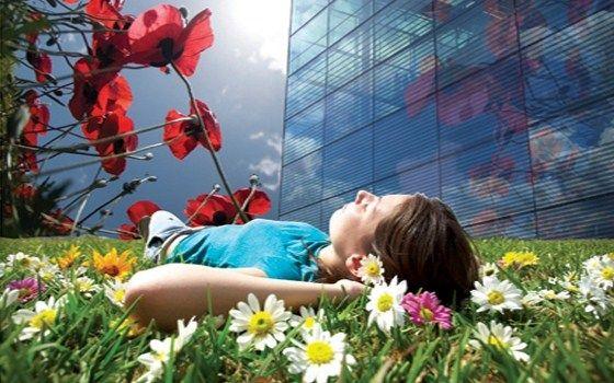 Floriade Holland - girl lying in grass.