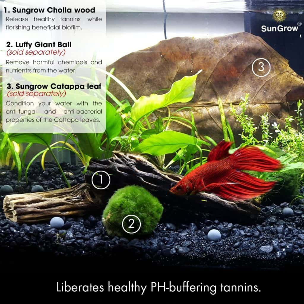 How To Raise Or Lower Ph In Aquarium Naturally Freshwater Aquarium Freshwater Aquarium Plants Fresh Water Fish Tank