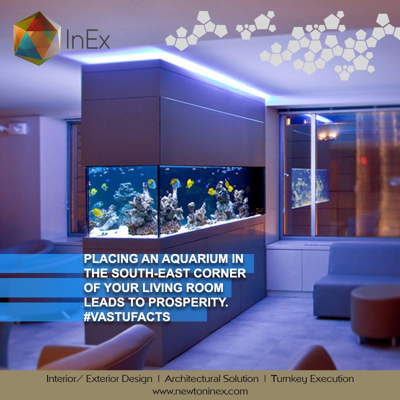 aquarium in the living room is a common sight but putting