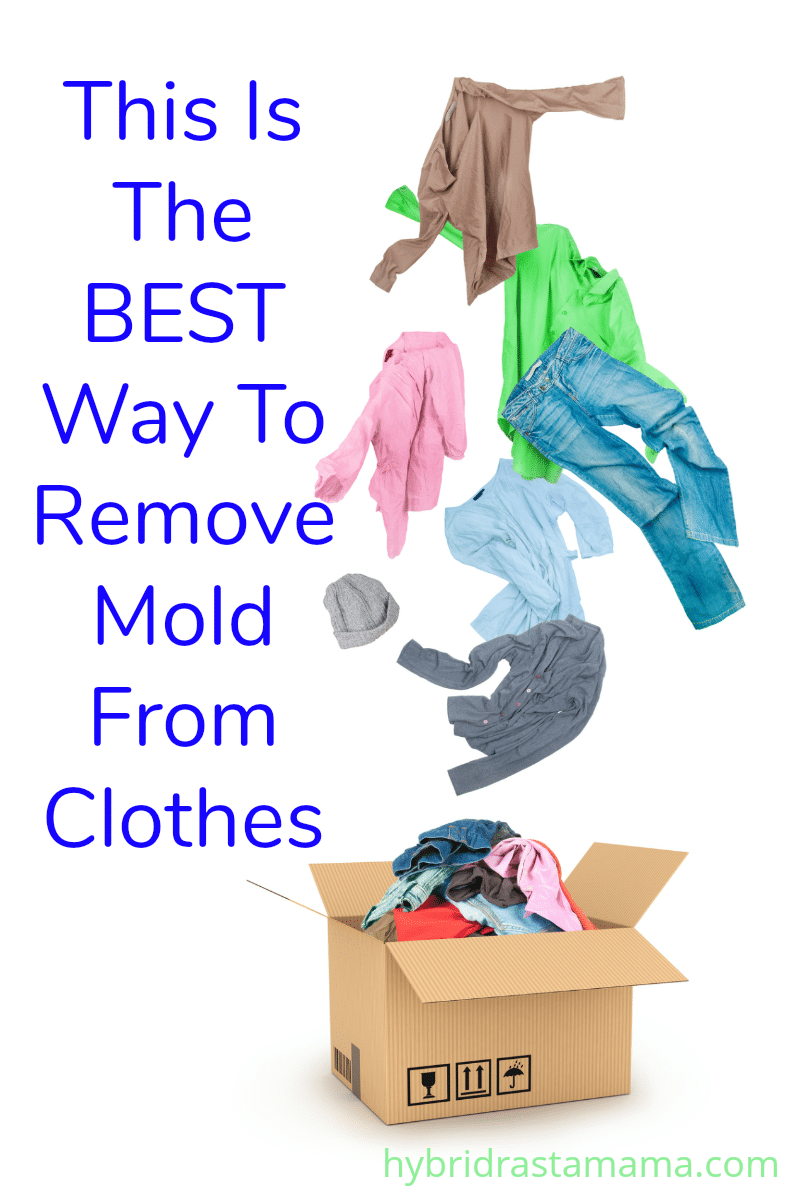 How To Get Mold Out Of Clothes And Fabrics Remove Mold From Clothes Mold On Clothes Mildew Remover For Fabric