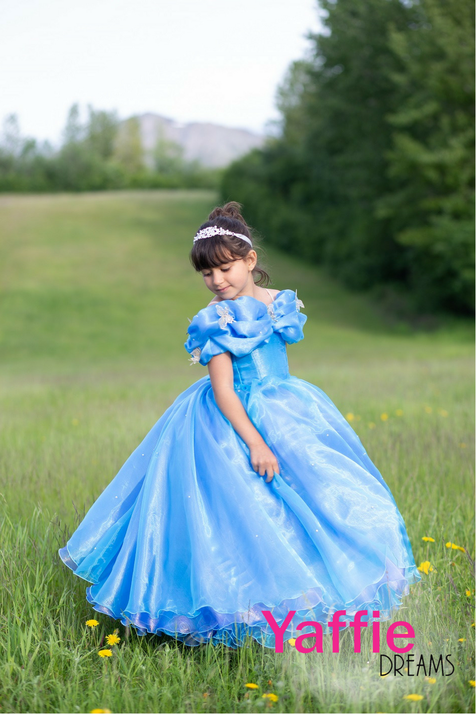73d5a9b8c Disney princess Cinderella dress Disney cinderella 2015 movie dress ...