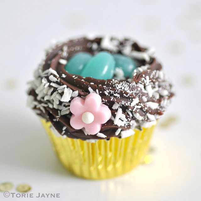 Gluten free mini chocolate nest cupcakes by torie jayne full gluten free mini berry chocolate cupcake nests perfect for easter gifts negle Gallery