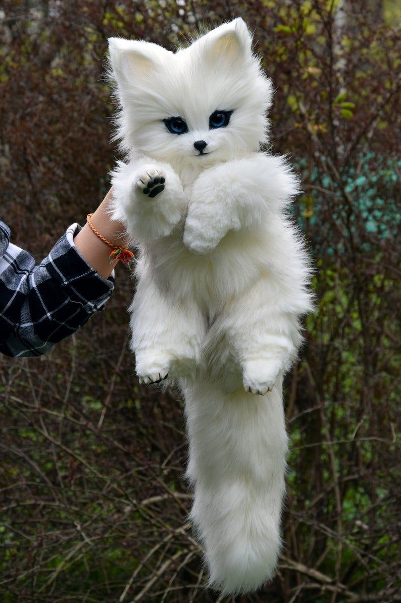 Arctic Fox Whimsical Animals Fantasy Creatures From Faux Etsy In 2020 Baby Animals Super Cute Cute Baby Animals Baby Animals Pictures