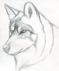 Image Result For Easy Pencil Drawings Pencil Art Animals In 2019
