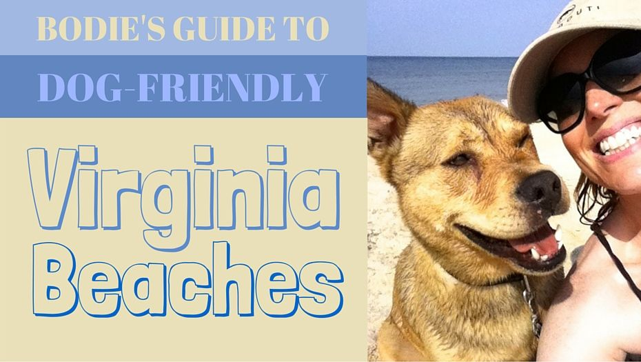Bodie S 3 Favorite Dog Friendly Virginia Beaches Reviews Of First Landing State Park Ocean View V Dog Friendly Beach Virginia Beach Vacation Virginia Beach