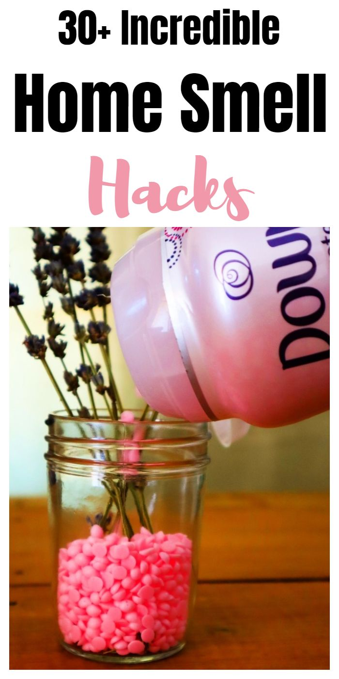 Practical ways to make your home smell amazing #householdhacks #cleaninghacks #householdtips #cleaningtips