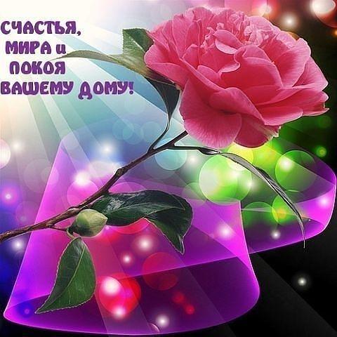 Поздравления с Днем рождения в прозе - Пустунчик 71