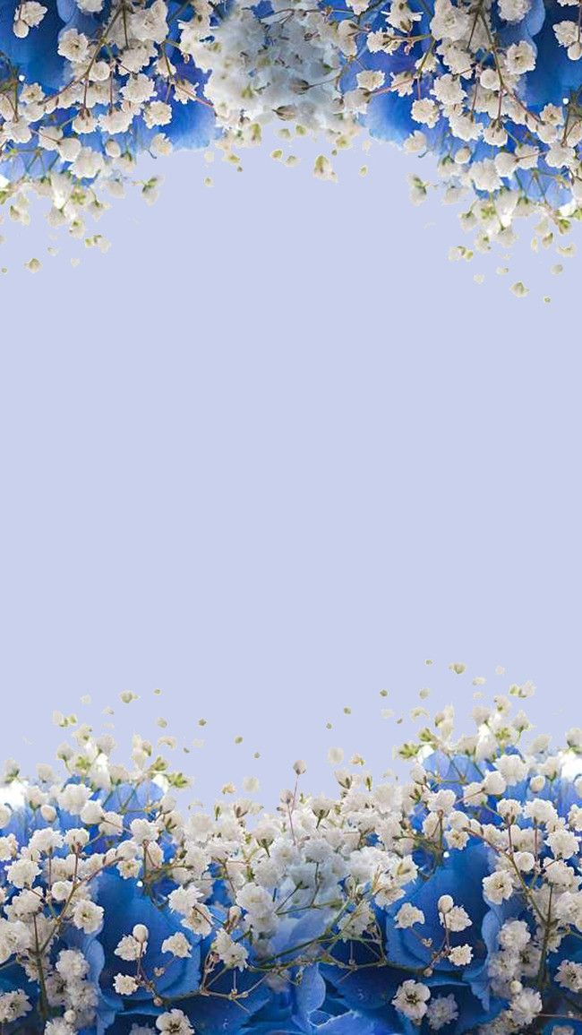 Ramos Flores Fundo Azul H5