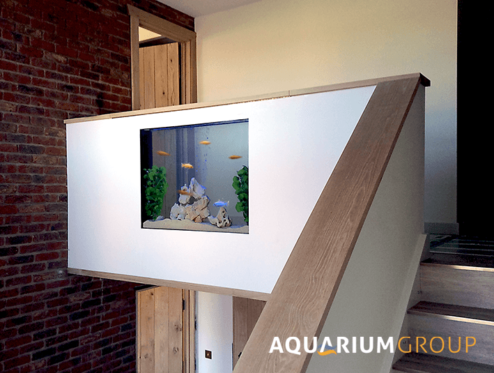 Custom built through wall fish tank incorporated into the for Fish tank built into wall