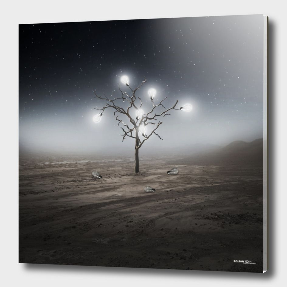 «Lights», Limited Edition Acrylic Glass Print by Zoltan Toth - From $75.00…