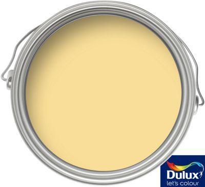 Sorbet Dulux Endurance Paint