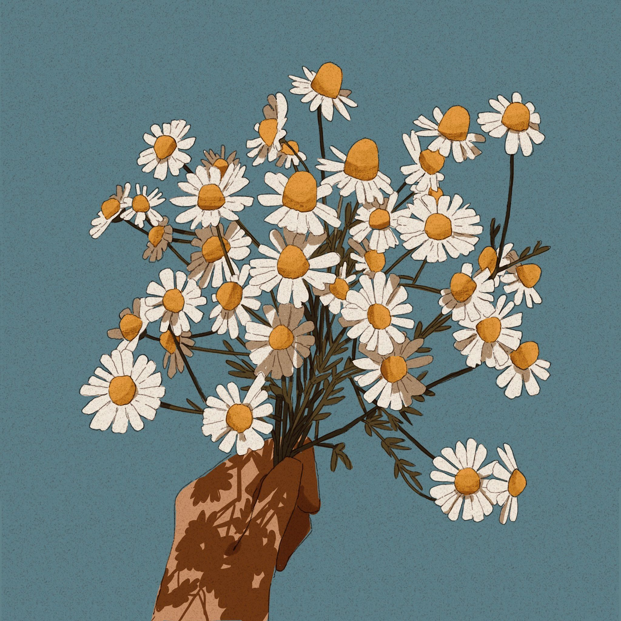 "Libby on Twitter: ""A handful of daisies #illustration… """