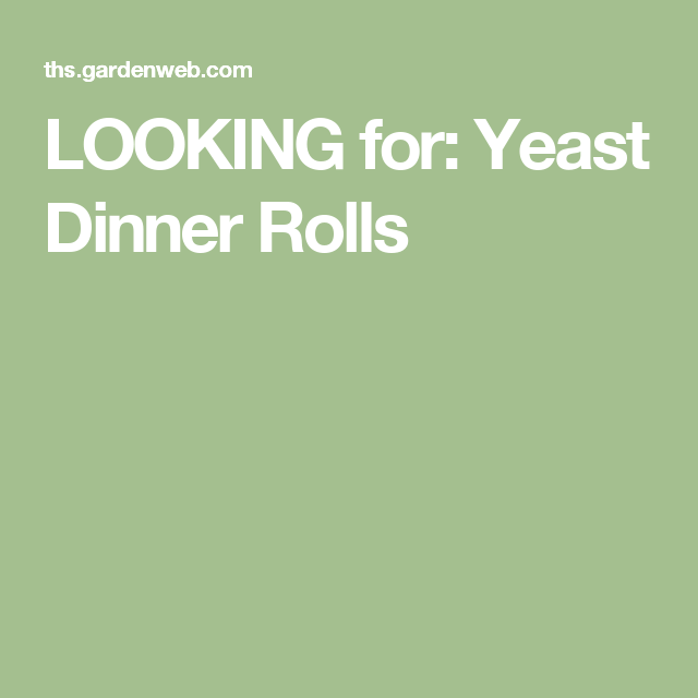 LOOKING for: Yeast Dinner Rolls
