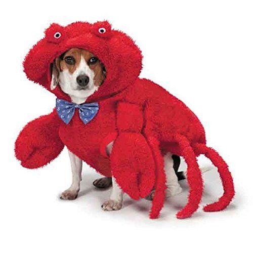 Zack Zoey Hairy Crab Costume For Dogs 16 Medium Zack