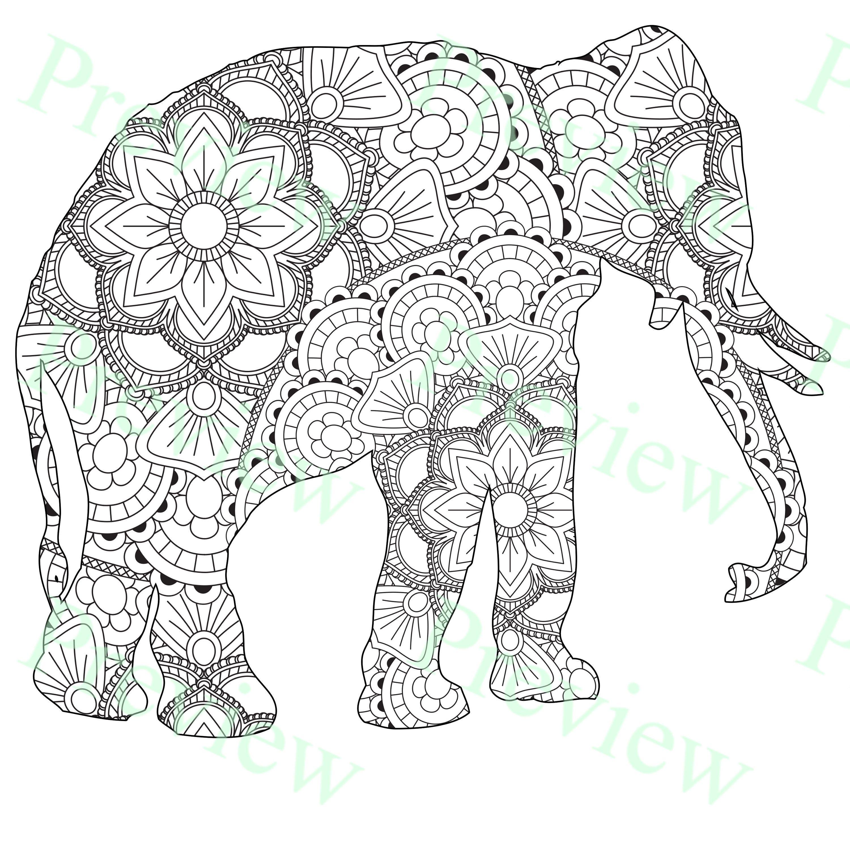 KDP Wildlife Animals Mandala 10 Coloring Pages Interior Low  Etsy