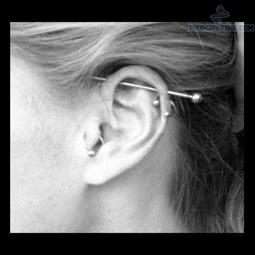 new-industrial-piercing-and-helix-tragus.jpg (500×500) | Piercings I ...