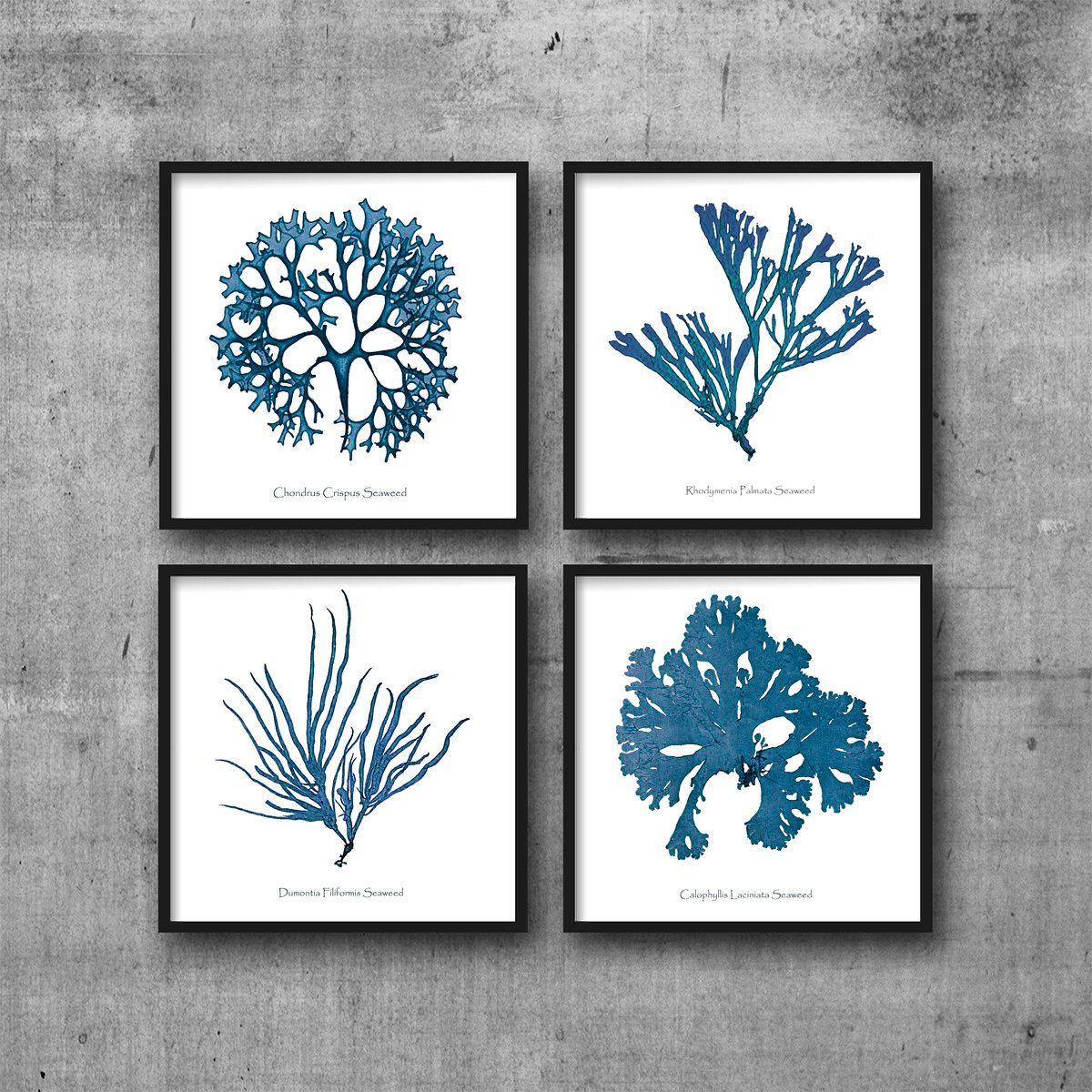 coral prints coral print sea coral set of nautical