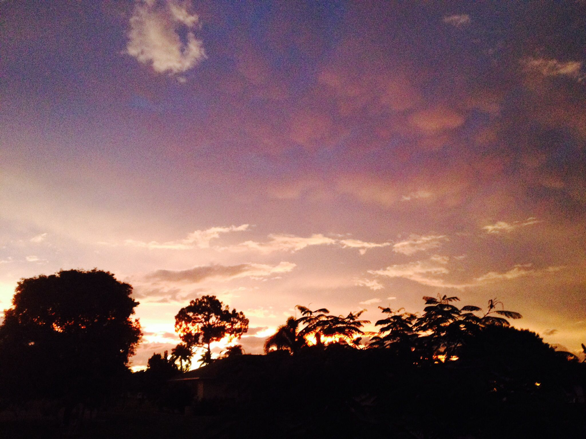 Beautiful photo I took of the florida sky :)