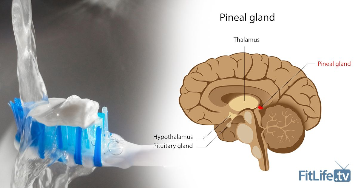 Fluoride Is Damaging Your Pineal Gland | Pineal gland