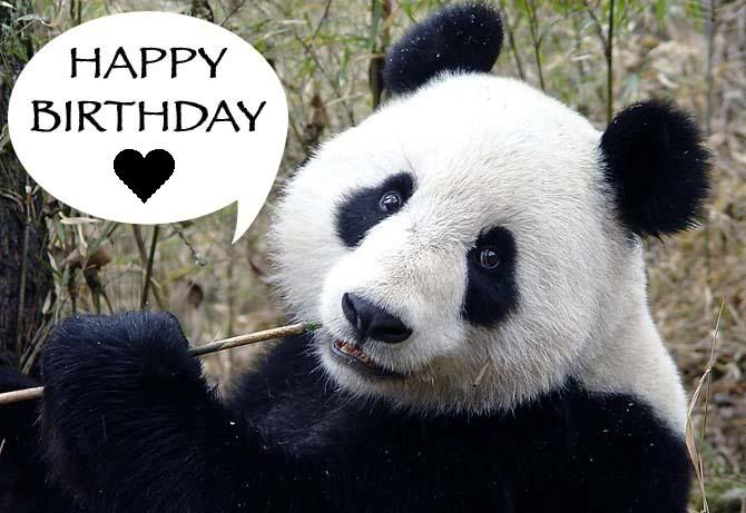 Pin by Betty Dickerson on Birthday Greetings | Panda ...