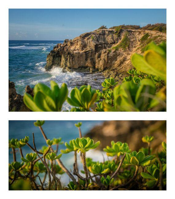 Kauai Hawaii Ocean Shoreline  2 panel Standout by DanielleVPhotography