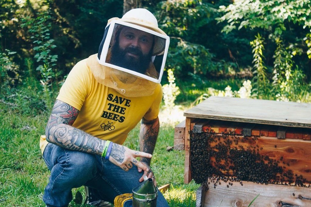 Save the bees! 5 fun facts about bees and honey #hoenybee #savethebees #honeybee