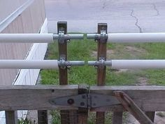 Coyote Proof Fence Fence Cat Fence Dogs Cats