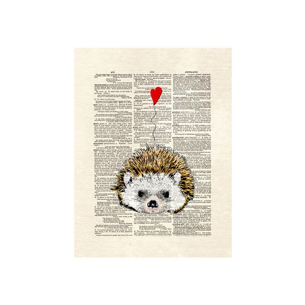 Hedgehog Wall Art Print (110 DKK) ❤ Liked On Polyvore Featuring Home, Home