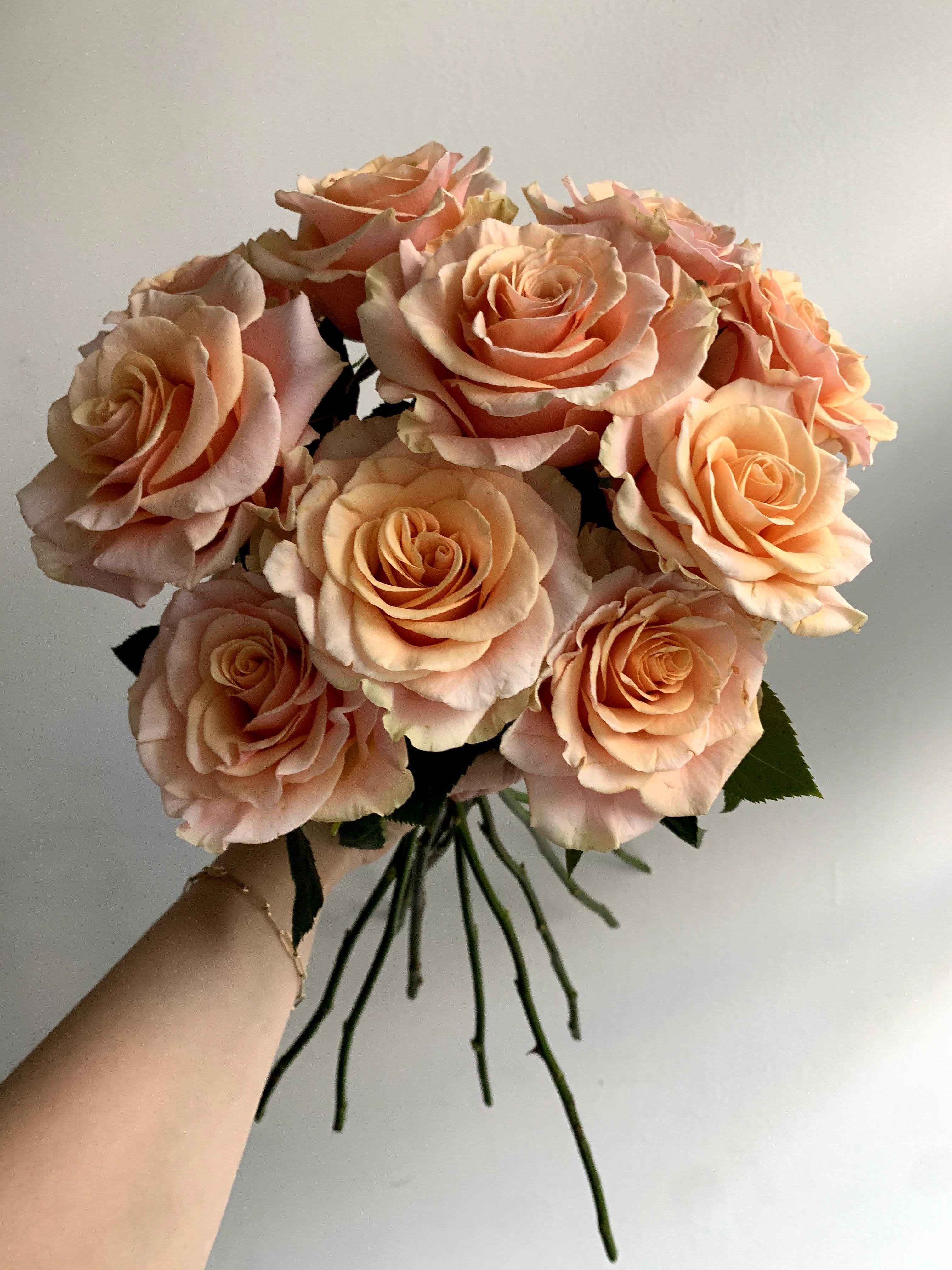 Phoenix Roses In 2021 Beautiful Flower Arrangements Pretty Flowers Flower Aesthetic