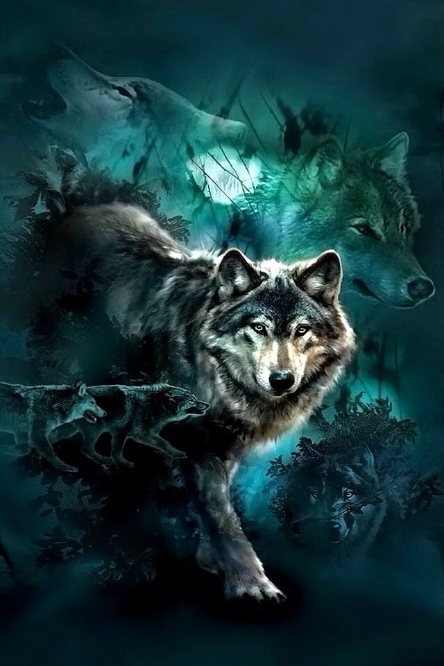 Wallpaper Stitch 3d Wolf Collage ☾wolves Djur Katt Bakgrunder
