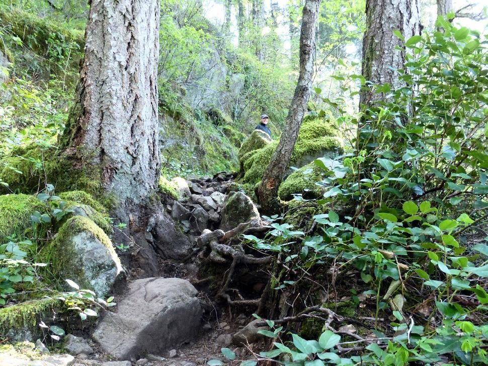 Vancouver Island's 7 Best Coastal Hikes - Explore Magazine ...