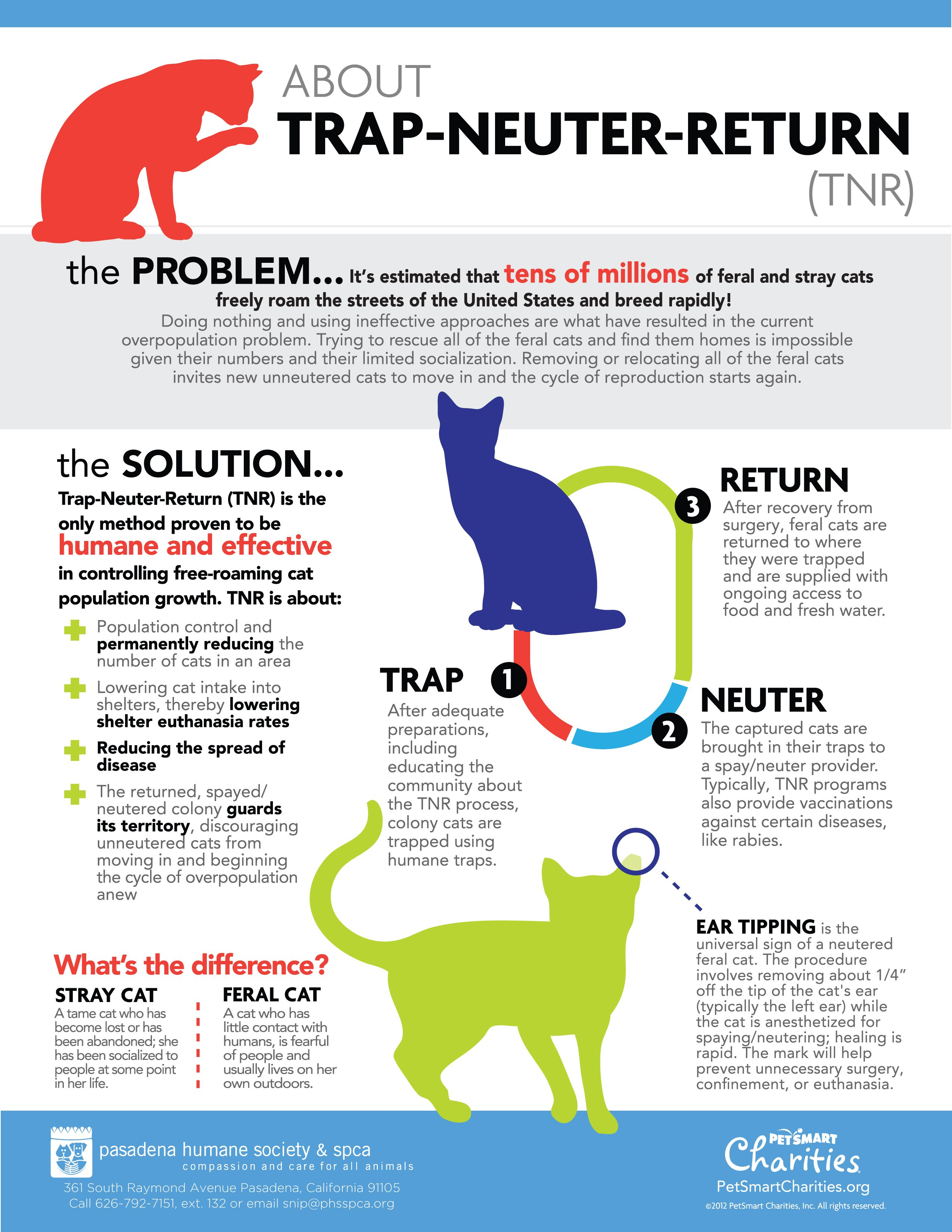About Trap Neuter Return Tnr For Feral Cats Contact Our Snip Coordinator For More Information At Snip Phsspca Org Feral Cats Cat Day Stray Cat