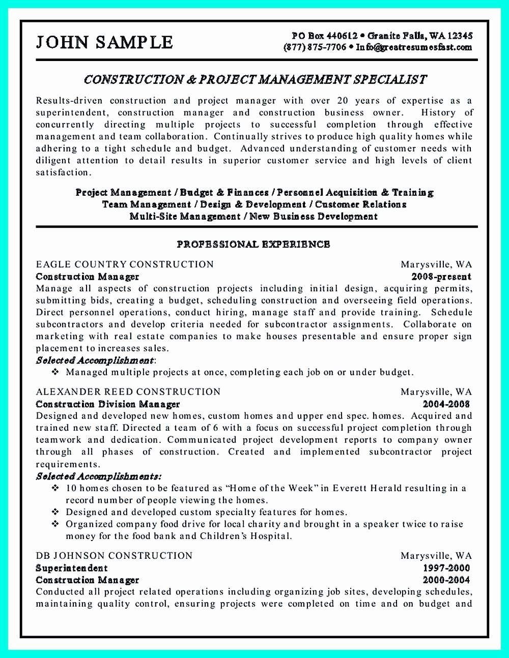 Project Manager Resume Sample Doc India