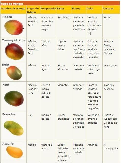 5197a69df63b Variedades de mangos