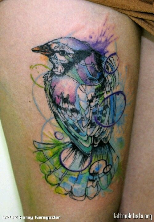 Watercolor Tattoo Blue Jay Bird Watercolor Bird Tattoo