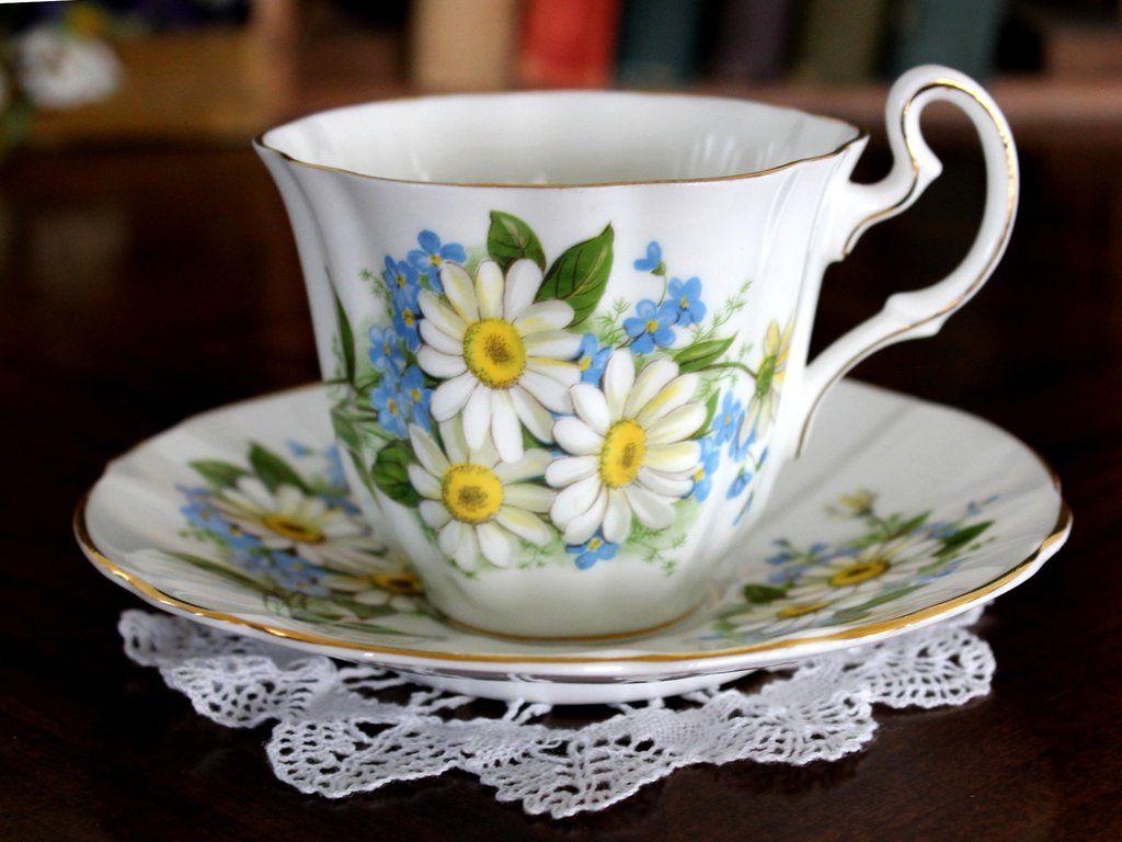 Royal Adderley Bone China Teacup and Saucer, White Daisies, English Tea Cup 15409 #teacups