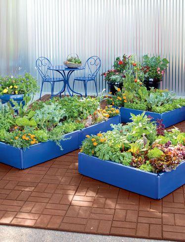 Plastic Raised Garden Beds Periwinkle Grow Bed Raised Beds Garden Beds Diy Raised Garden Raised Garden Beds