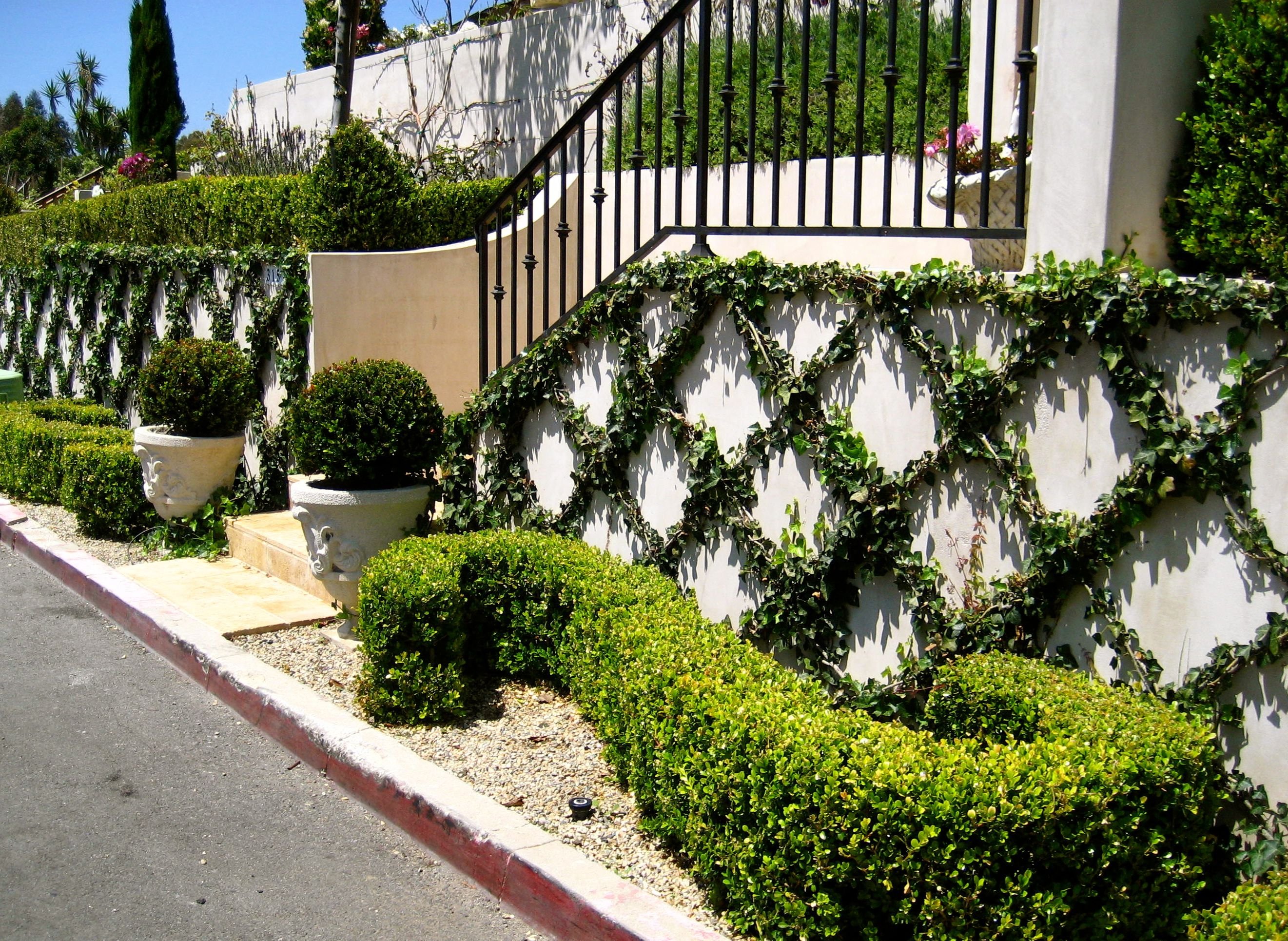 european garden design parterre scroll with boxwood in a french garden - European Garden Design