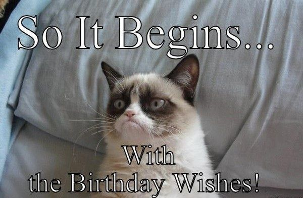 Birthday Wishes Funny For Husband ~ Ultimate funny happy birthday meme s birthday memes memes