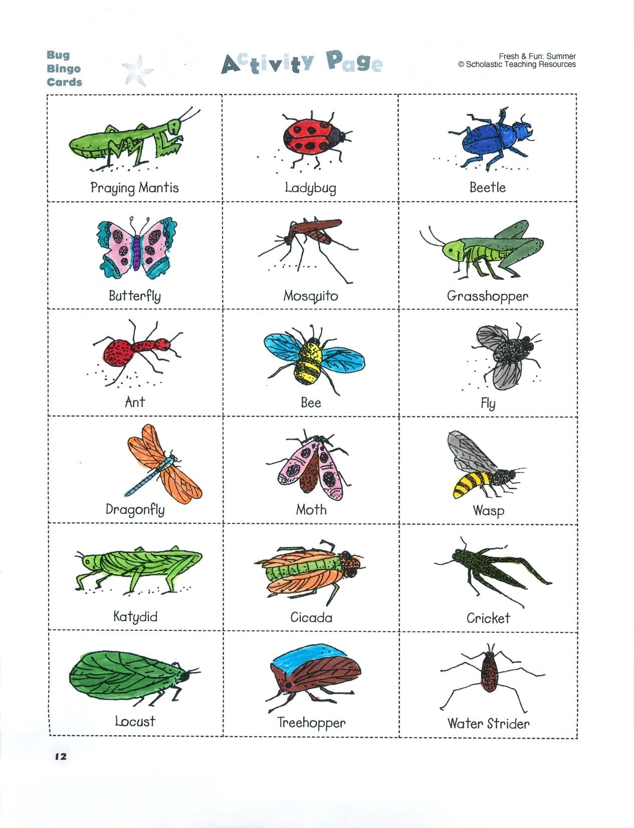 Build Science Vocabulary With A Game Of Bug Bingo