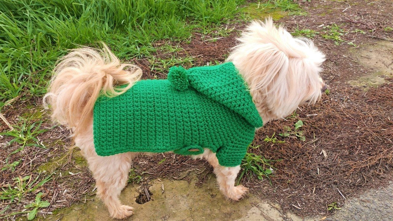 7b55a5130 How to Crochet a Dog Sweater  Adding Arm Sleeves and a Hoodie ...